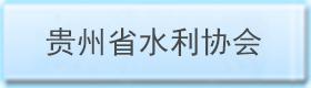 贵州省水利协会